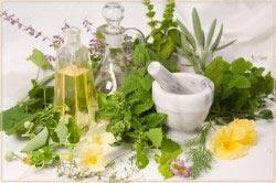 Лечение похмелья травами