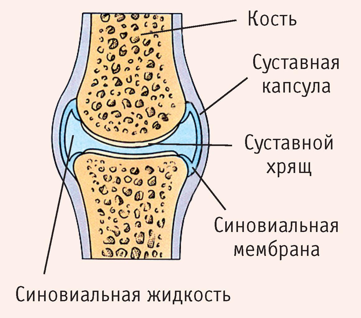 Влияние алкоголя на суставы рук артрит мелких суставов рук лечение