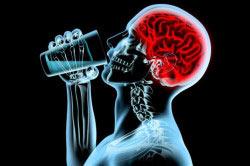 Торможение алкоголем чувства сытости в мозгу