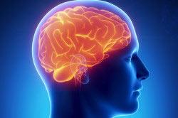 Вред для головного мозга