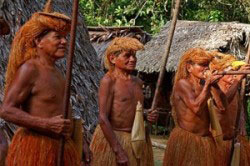 Южноамериканские индейцы - самый устойчивый к алкоголю народ