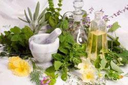 Травы от алкоголизма