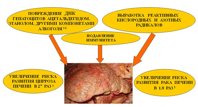 врач диетолог заболотный константин борисович