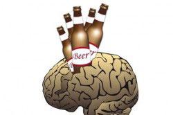 Пагубное влияние пива на мозг
